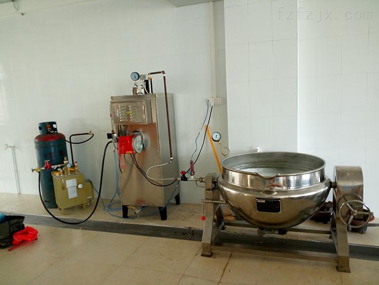 旭恩50KG液化气蒸汽发生器量身定制